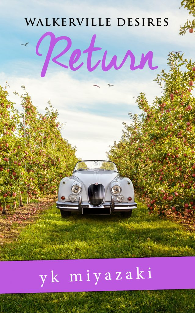 Book Cover: Return